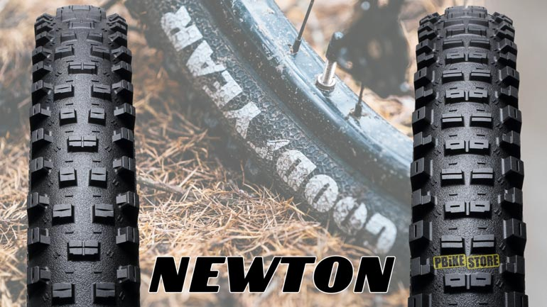 copertoni goodyear newton st e newton